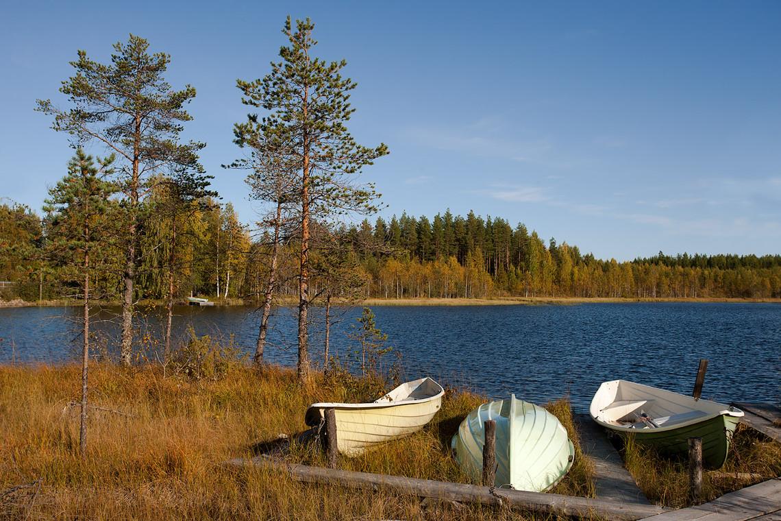 Savijärvi